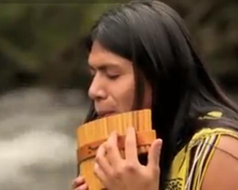 سازدهنی بومی